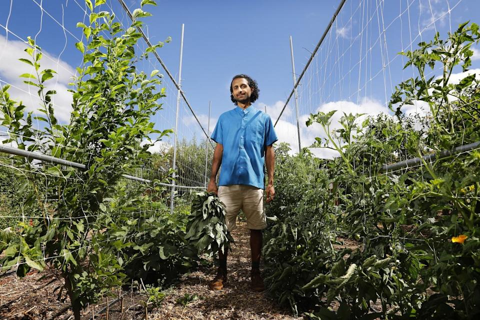 Rishi Kumar, co-founder of Healing Gardens, stands amid the fields at his urban farm and nursery in Pomona.