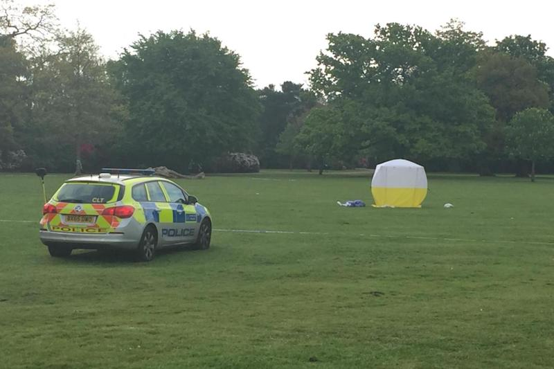 Stabbing: Police at the scene in Dulwich Park (Matt Watts)