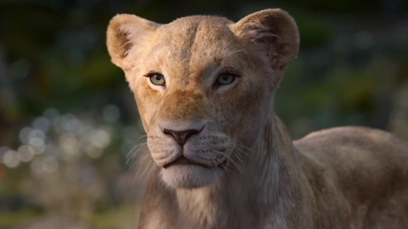Beyoncé Knowles-Carter provides the voice of Nala in the live-action remake of 'The Lion King'. (Credit: Disney)