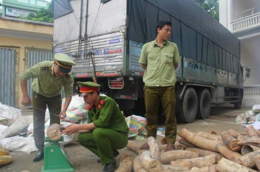 Three tonnes of ivory seized in Vietnam