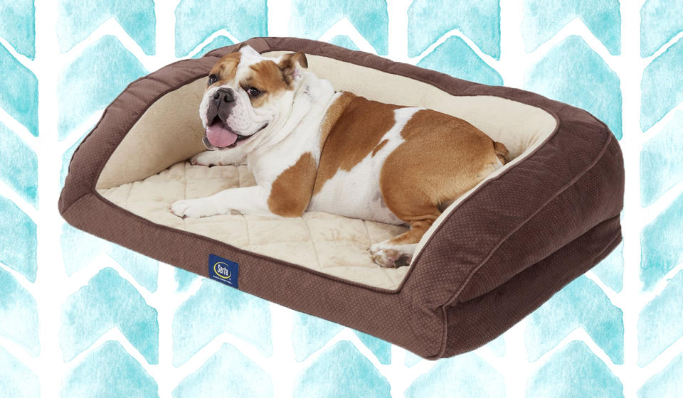 An orthopedic dog bed? You bet. Your baby deserves ultimate comfort. (Photo: Chewy)