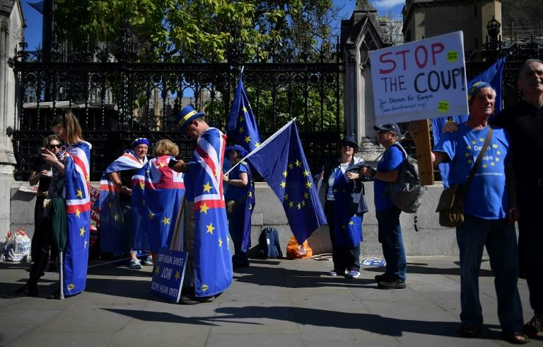Anti-Brexit activists wave EU flags whilst draped in Union flags as they demonstrate outside the Houses of Parliament (AFP Photo/DANIEL LEAL-OLIVAS)