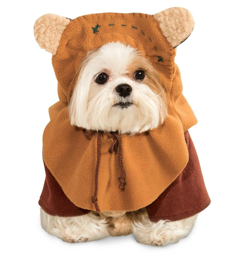 Disney has this pet costume available: an Ewok from Star Wars: Return of the Jedi.
