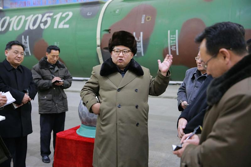 North Korea carried out a nuclear test in January and a long-range rocket launch last month (AFP Photo/)