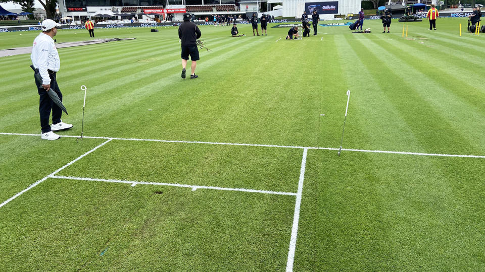 The pitch at Seddon Park, pictured here for the first Test between New Zealand and West Indies.