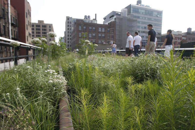 FILE - In this June 7, 2011, file photo, an area of exposed rail pokes through the foliage after on the High Line, an industrial era elevated railway converted into a city park in New York. Many plant and landscape experts have begun thinking of plants in terms of communities, instead of as individual specimens. They recommend that home gardeners look to the wild for inspiration. The idea is to think of plants as interrelated species. That shift in thinking got underway in earnest with the opening of the High Line. In a move considered radical at the time _ but replicated in parks and gardens across the country since then _ the designers of the High Line went with a wilder look, with plantings resembling roadside grasses and wildflowers more than a traditional garden. (AP Photo/Kathy Willens, File)