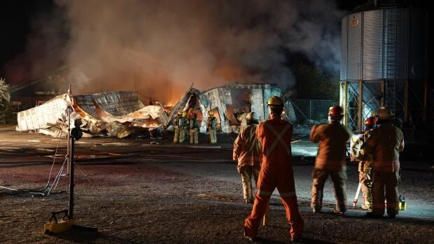 A dairy farm in Mirabel, about 50 km north of Montreal, was almost completely destroyed in a fire overnight and 200 of its cows died. (Stéphane Grégoire/Radio-Canada - image credit)