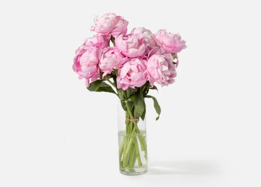 <p>This <span>Urbanstems The Peony</span> ($90) bouquet is the ultimate present. Now that it's spring, there's no better time to order these.</p>