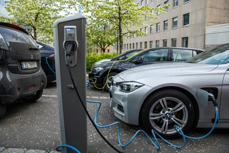 Rich or not, young and old, hip urbanites and rural dwellers alike: Norwegians, including Crown Prince Haakon, are increasingly switching to electric cars (AFP Photo/Jonathan NACKSTRAND)