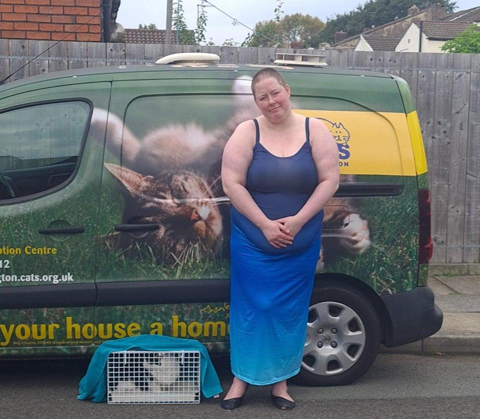 Cats Protection helps around 200,000 cats and kittens every year (Cats Protection)