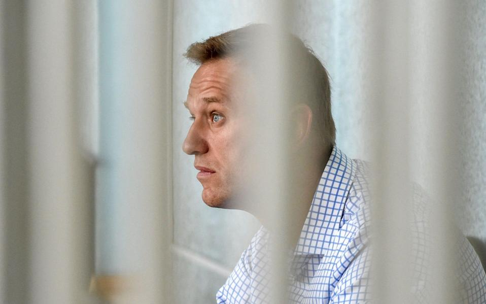 Alexei Navalny has been in prison since January - VASILY MAXIMOV/AFP