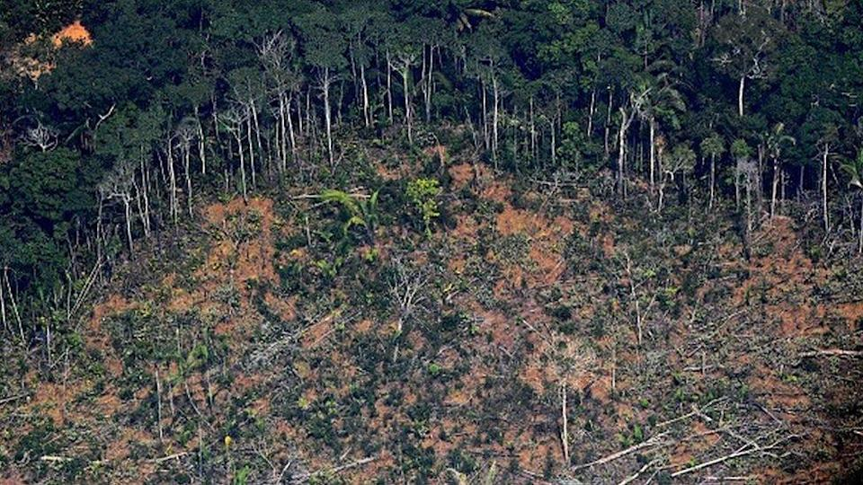 Aerial picture showing a deforested piece of land in the Amazon rainforest in Brazil in 2019