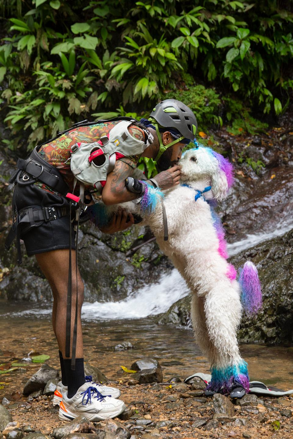 Josh White nuzzles his dog Snow, who rocks colorful fur, when the competition takes them to Costa Rica.