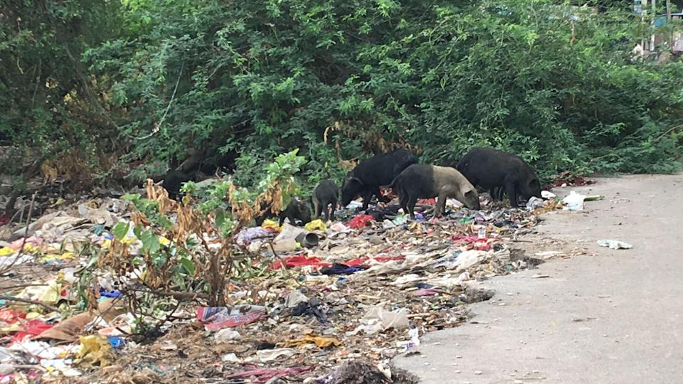 """<div class=""""paragraphs""""><p>A sewage stream overflowing with garbage flows adjacent to their homes.</p></div>"""
