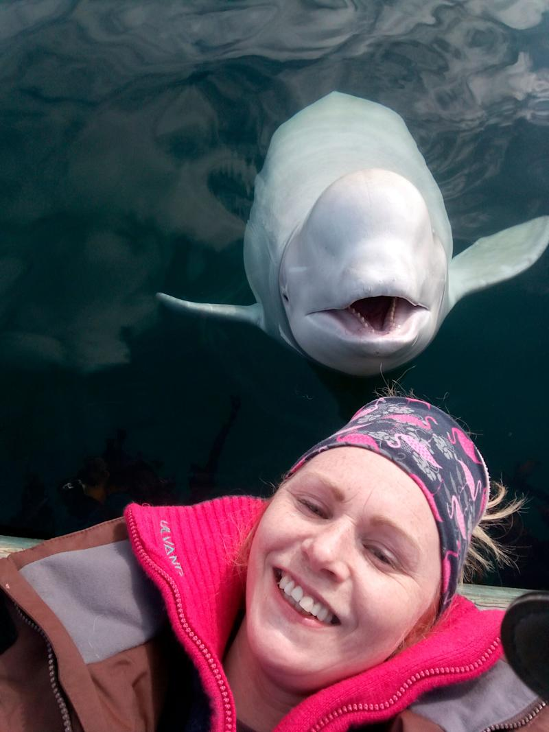 Linn Saether poses with Hvaldimir days after a fisherman removed a harness with a camera mount from the beluga whale, in Tufjord, Norway. (Photo: Linn Saether via AP)
