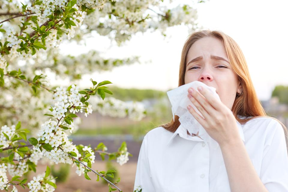 Outdoor shot of displeased Caucasian woman feels allergy, holds white tissuue, stands near tree with blossom, feels unwell, sneezes all time. People and health problems. Spring time. Blooming