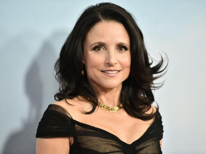 Julia Louis-Dreyfus at the premiere of 'Downhill' on 12 February 2020 in New York City (Steven Ferdman/Getty Images)