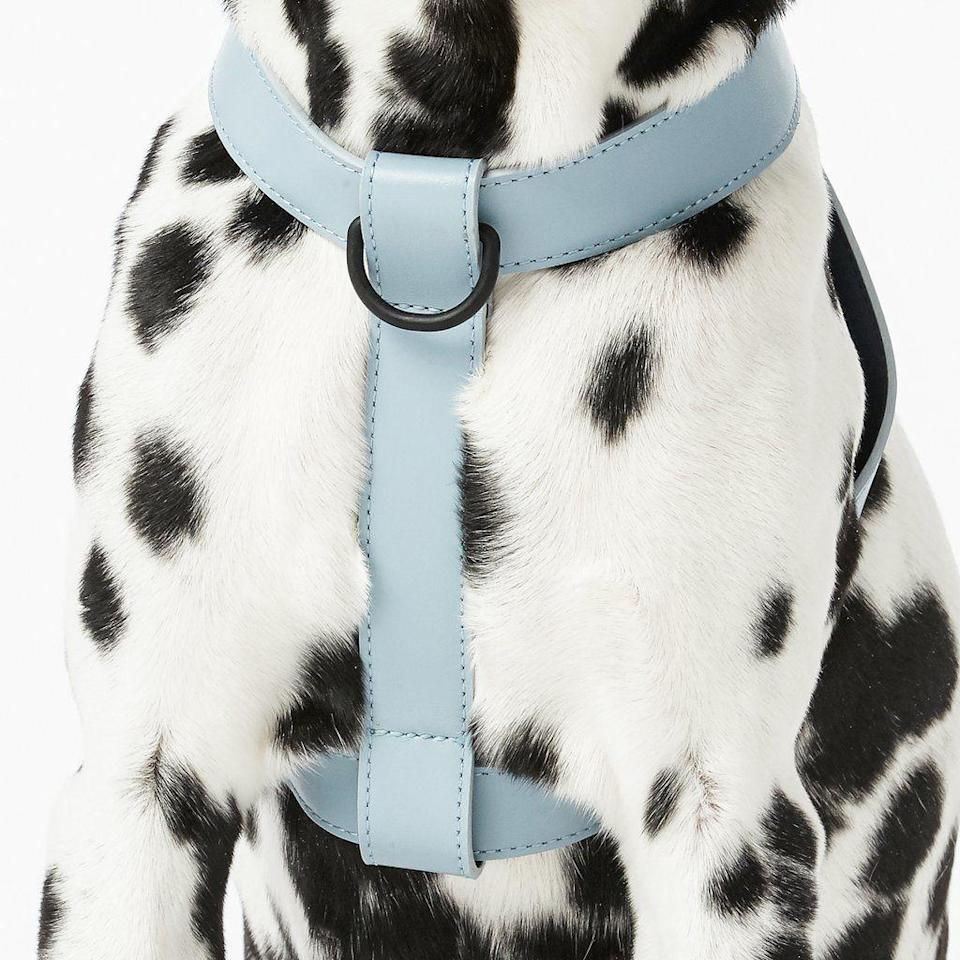"""<h3><strong>Italian-Leather Harness</strong></h3><p>They may have chewed up your Italian-leather loafers, but you can still be the bigger human by gifting them this luxe and fashion-forward pet purchase.</p><br><br><strong>Fable</strong> Harness, $75, available at <a href=""""https://fablepets.com/collections/all/products/harness?variant=18976829898850"""" rel=""""nofollow noopener"""" target=""""_blank"""" data-ylk=""""slk:Fable"""" class=""""link rapid-noclick-resp"""">Fable</a>"""