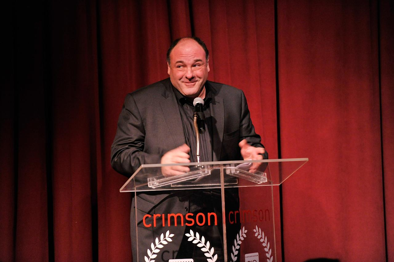 NEW YORK, NY - JANUARY 07:  Actor James Gandolfini speaks onstage at the 2012 New York Film Critics Circle Awards at Crimson on January 7, 2013 in New York City.  (Photo by Stephen Lovekin/Getty Images)