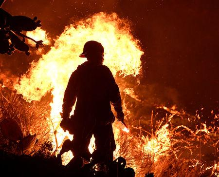 FILE PHOTO: Firefighters battle a Santa Ana wind-driven brush fire called the Thomas Fire near Ventura. REUTERS/Gene Blevins