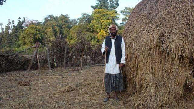 Gulam Rasul, a Van Gujjar stands by his purhal or purchased haystack, strewn over by an elephant. Elephant dung can be seen laying to his left. He is nonchalant as they do not cause excessive damage. Yet, the fact that he is a Van Gujjar, leaves him hanging with an uncertain future. Photo by Radhika Gupta.