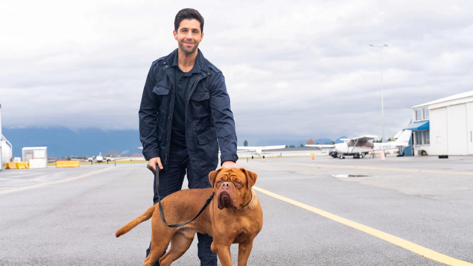 Josh Peck plays the son of Tom Hanks's character from the classic film in 'Turner and Hooch'. (Farah Nosh/Disney)