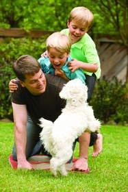 Smart Ways to Make the Most of Summer With Your Pets