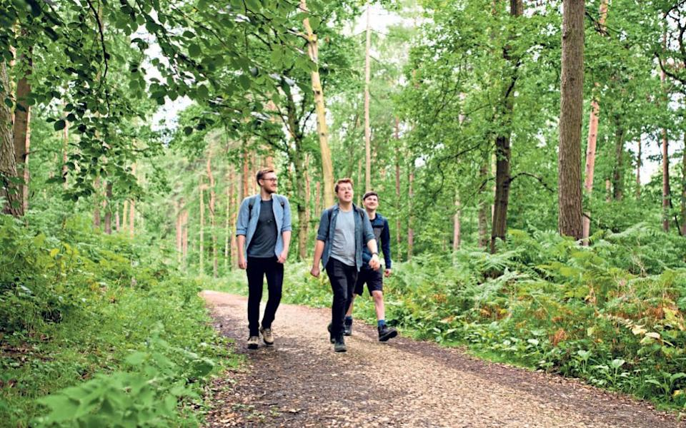 Duchy delights: Jack Rear and friends stride through Needwood - Andrew Fox