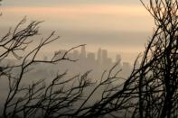 FILE PHOTO: Downtown Los Angeles is seen behind a tree burned by wildfire before expected heavy rains, as the coronavirus disease (COVID-19) continues, in Los Angeles