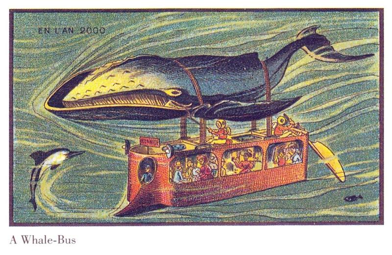 Hop aboard the whale bus. PETA might have a thing or two to say about this...