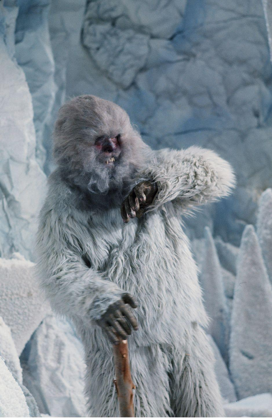 <p>Much like Bigfoot, the Abominable Snowman has long been a mythological creature that the public has tried to find for thousands of years. The lure of the conspiracy? Large foot tracks found in the snow of a two-legged, human-like animal. </p>