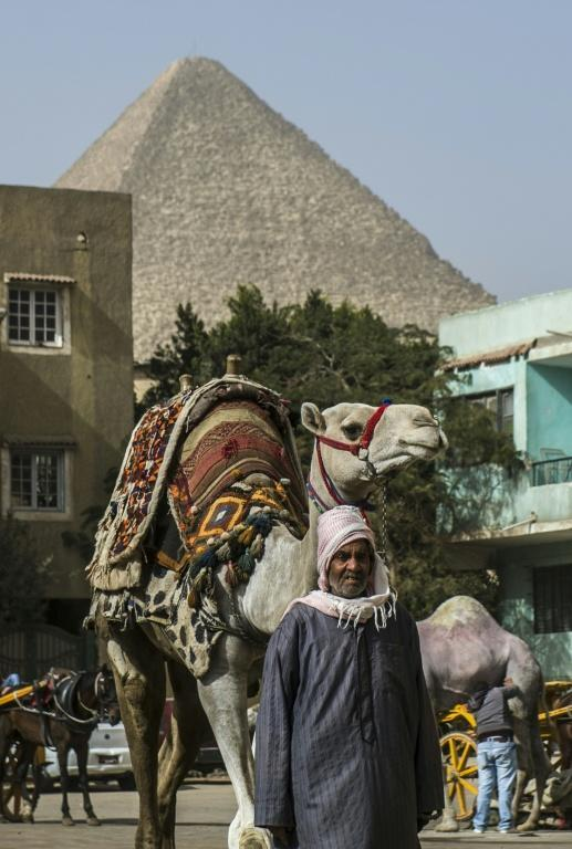 An Egyptian man waits with his camel for customers near the pyramids in the southern Cairo district of Giza on January 19, 2016