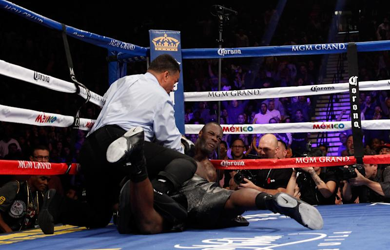 WBC heavyweight champion Bermane Stiverne and Deontay Wilder (R) fall during their title fight at the MGM Grand Garden Arena on January 17, 2015 in Las Vegas, Nevada (AFP Photo/Steve Marcus)