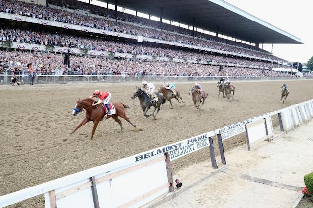 Justify, ridden by jockey Mike Smith, crosses the finish line to win the 150th running of the Belmont Stakes, at Belmont Park in Elmont, New York, on June 9, 2018 (AFP Photo/AL BELLO)