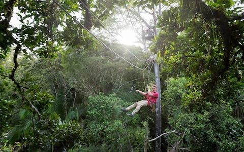 Zip-lining through the Amazon - Credit: Getty