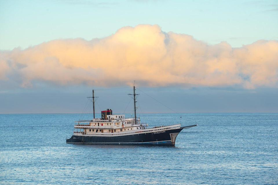 The MV Evolution by Quasar Expeditions