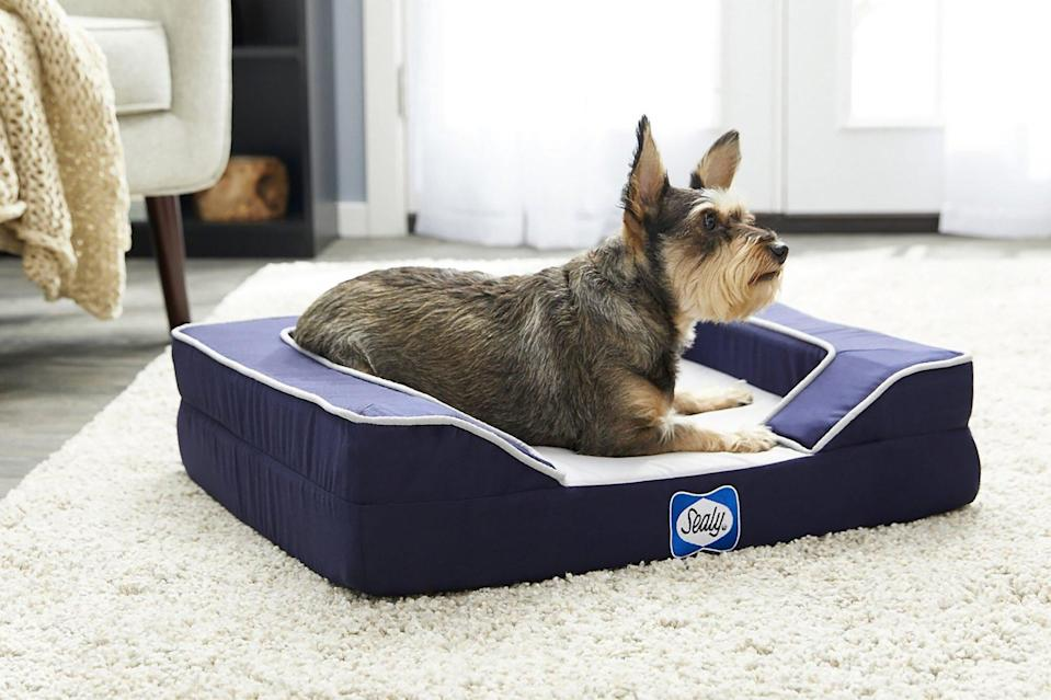 dog laying on cooling bed