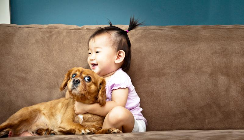 Pets Help Kids Build Immunity Even Before They're Born, Study Finds