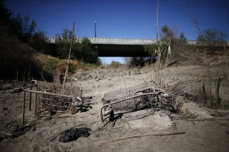 Discarded shopping carts lie in the dry Tule river bed in Porterville, California October 14, 2014. REUTERS/Lucy Nicholson