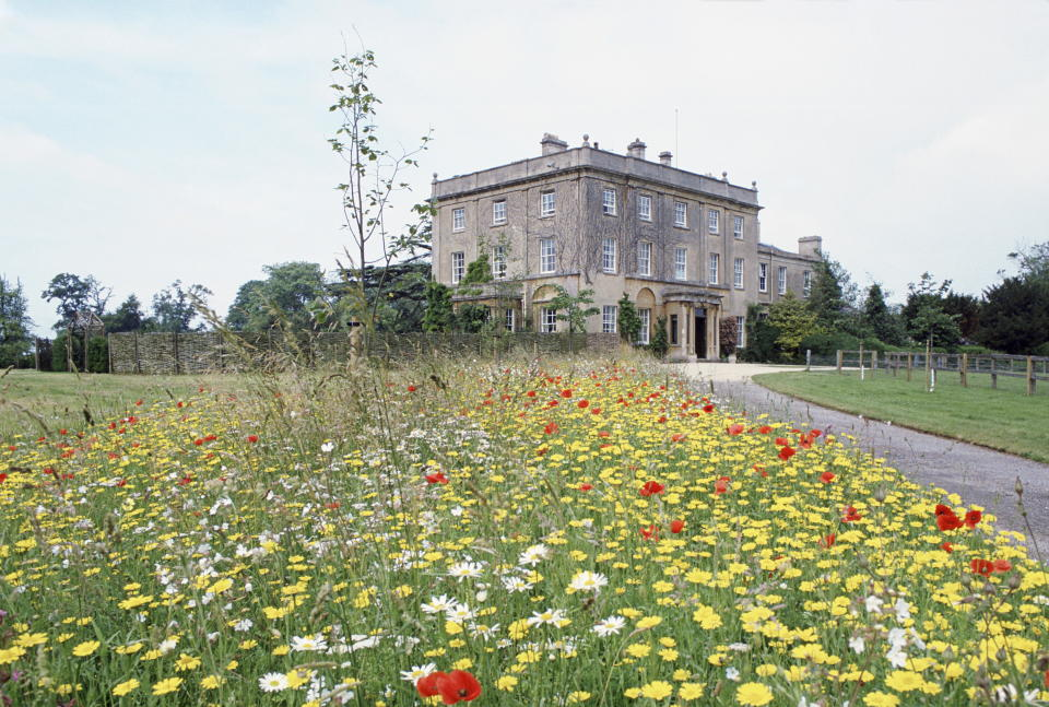 TETBURY, UNITED KINGDOM - JULY 14:  A Wild Flower Meadow Planted By Prince Charles At Highgrove, Country Home To The Wales Family  (Photo by Tim Graham Photo Library via Getty Images)