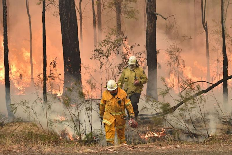 NSW firefighters back burn ahead of a fire front in Jerrawangala on Wednesday.
