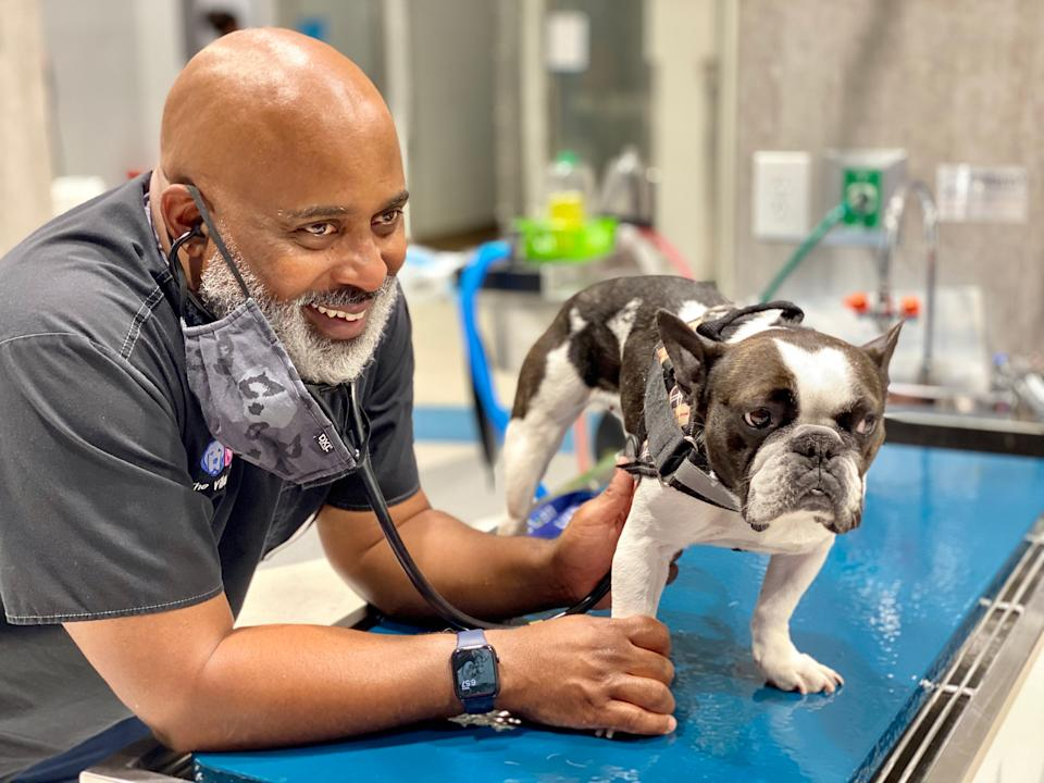 """Draper with Bella, a French Bulldog, at The Village Vets on Oct. 8. Bella's front leg is """"back to 100% now, fortunately,"""" says Draper.<span class=""""copyright"""">Courtesy Will Draper</span>"""