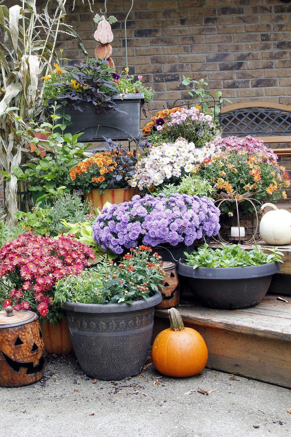 "<p>Give your garden an autumn makeover by filling planters and flower beds with fall favorites. You simply can't go wrong with mums!</p><p><a class=""link rapid-noclick-resp"" href=""https://www.amazon.com/dp/B00IF0MHP8/ref=dp_cerb_3?tag=syn-yahoo-20&ascsubtag=%5Bartid%7C10050.g.2633%5Bsrc%7Cyahoo-us"" rel=""nofollow noopener"" target=""_blank"" data-ylk=""slk:SHOP PLANTERS"">SHOP PLANTERS</a> </p>"