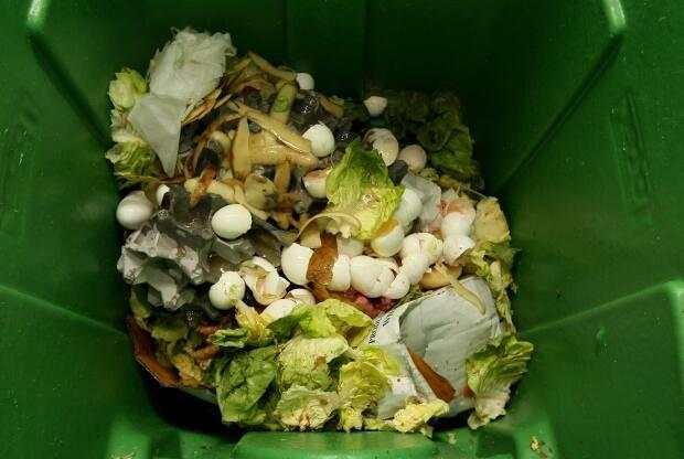 It's still important to put organic materials in the green cart because if it goes straight to landfill, it produces methane and takes up valuable landfill space, says Susan Antler, executive director of the Compost Council of Canada. (Justin Sullivan/Getty Images - image credit)
