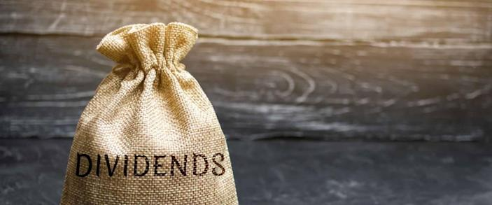 Money bag with the word Dividends