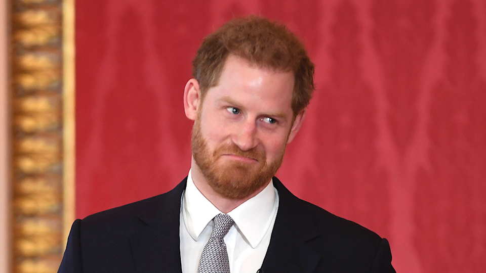 Prince Harry pulls face represents Rob Lowe ponytail claim