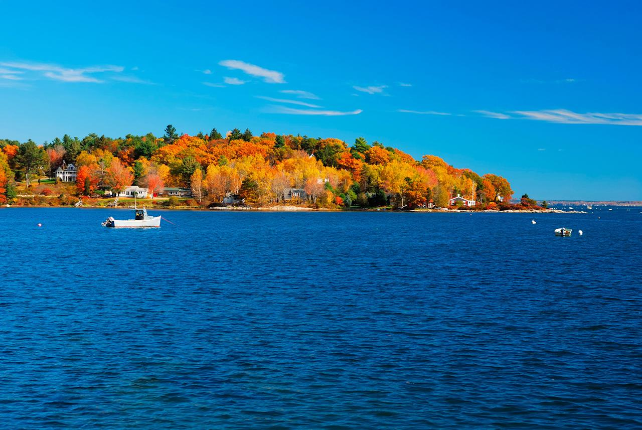 """<p>If such an award existed, Maine would win the best in class for fall foliage, where <a href=""""https://www.maine.gov/dacf/mfs/projects/fall_foliage/whenandwhere/"""">brilliant orange hues</a> begin popping up across mountainsides as early as September. Brown says there's no better place to spot peak fall foliage than in Ogunquit, a quaint beach town near the New Hampshire border. """"For foliage lovers, the leaves begin to change colors in September and peak in October,"""" she says, adding that autumn is also prime <a href=""""https://www.marthastewart.com/1503502/best-way-cook-and-shell-lobster"""">fishing season for lobster boats off the coast of Maine</a>. """"Ogunquit celebrates <a href=""""https://www.ogunquitperformingarts.org/event/capriccio-2/"""">Capriccio</a> for two weeks every fall&mdash;it's their annual autumn celebration, and it showcases local art, music, and hosts a city-wide kite flying festival.""""</p>"""