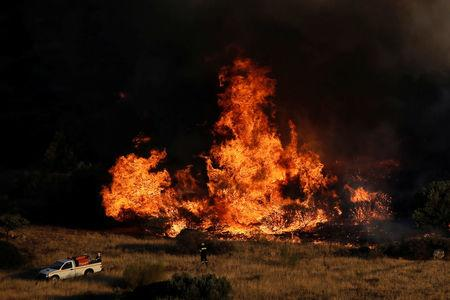 A firefighter stands in front of blazing flames as a wildfire burns in the area of Kalyvia, near Athens