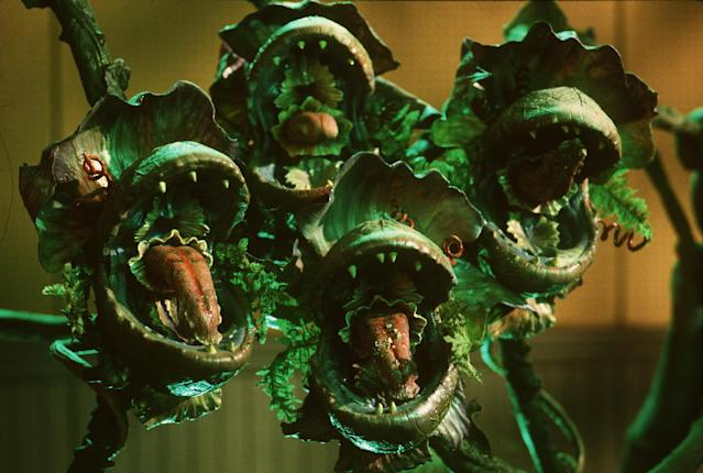 Audrey II's pods provide backup singing … and chomping. (Photo: Warner Bros.)