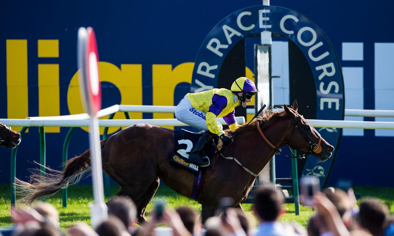 Brando is pictured winning last years's Ayr Gold Cup.